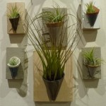 Ceramic plant pockets with air plants.