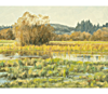 "Link to ""Billy Frank Nisqually Wildlife Refuge #1"" by Cal Capener"