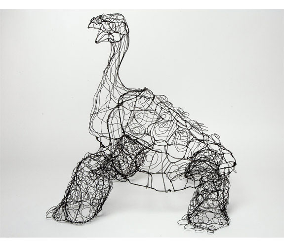 "Colleen Cotey ""Lonesome George, The Last Pinta Island Tortoise"""