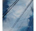 "Link to ""Crossed Wires No. 23"" by Jiji Saunders"
