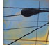 "Link to ""Crossed Wires No. 24"" by Jiji Saunders"